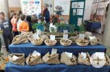 Kartoffelausstellung in Rottweil